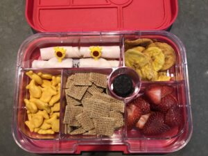 What to pack for the beach with kids: Yumbox